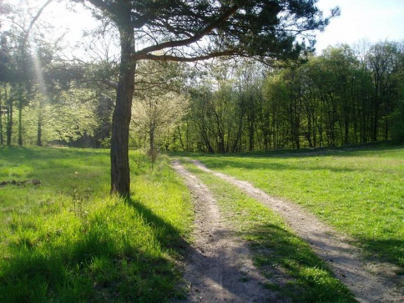 Jarní příroda